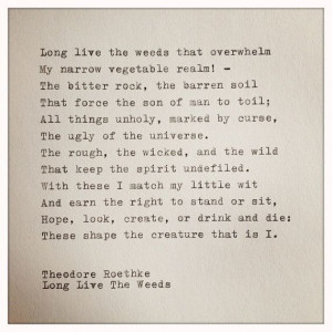 Theodore Roethke Typewriter Quote by farmnflea on Etsy, $15.00