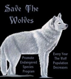 Save the wolves and promote the endangered species programs! More