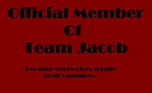... am i kidding team edward vs team jacob all out war have fun with that
