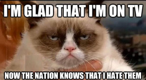 Funny Grumpy Cat Phrases Grumpy cat quotes