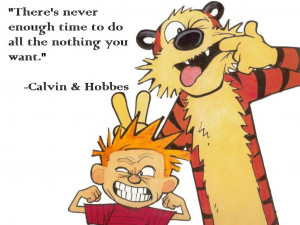 calvin and hobbes quotes on life calvin amp hobbes unleashed