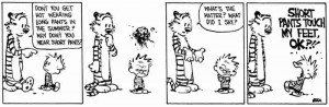 Best of Calvin and Hobbes