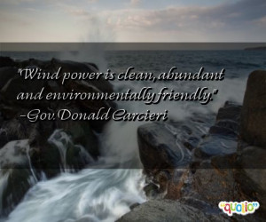 Wind power is clean , abundant and environmentally friendly .
