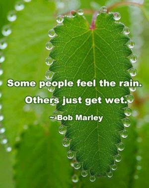 Some people feel the rain, others just get wet: Bob Marley quote