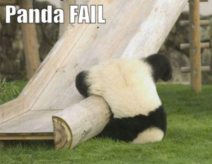 cute panda trying to slide a swing but fails!
