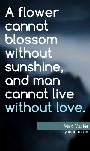 ... without sunshine, and man cannot live without love, ~ Max Muller