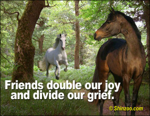 Friends double our joy and divide our grief.""