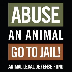 Animal Abuse Quotes And Sayings Abuse an animal, go to jail!