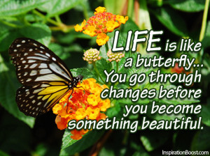 Life is like a butterfly… You go through changes before you become ...