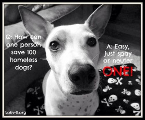 Important information from the ASPCA, including their mobile and ...