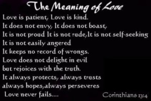 The Meaning Of Love (20)