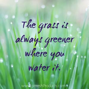 green grass - unknown