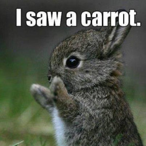 funny march pictures, love quotes, funny quotes, funny kids, funny ...