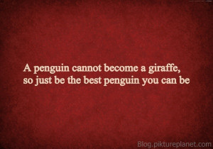 penguin cannot become a giraffe, so just be the best penguin you can ...