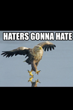 sassy quotes about haters. 2010 2pac quotes about haters.