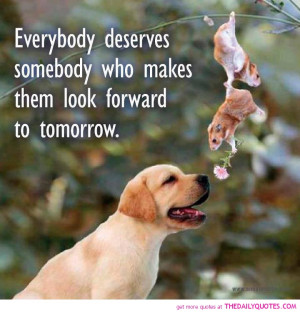 ... Somebody Who Makes Them Look Forward To Tomorrow - Animal Quote