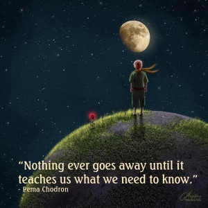 Pema Chodron: The Little Prince pic :)
