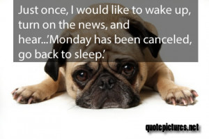 Cute Quotes, Funny Quotes About Monday: It Has Been Canceled