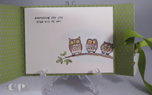 This card is a perfect example of adding a pop to a card with a set ...