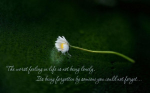 Feeling alone quotes the worst feeling in life is not being lonely its ...