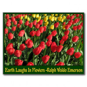 Tulips With Quotes And Sayings Postcards