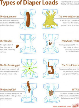 The Different Types Of Baby Diapers (Infographic)