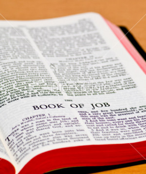 Scripture Sunday: The Book of Job