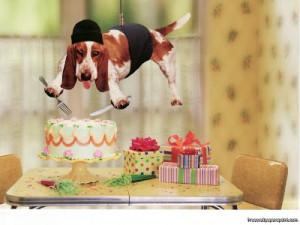 Dog Happy Birthday Funny Image