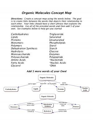 Organic Molecules Concept Map picture