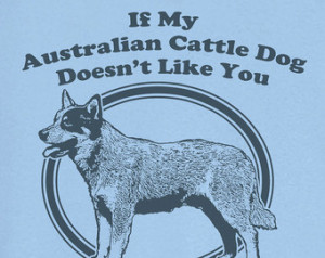 ... Australian Cattle Dog Doesn't Like You... Funny Novelty T Shirt Z13014