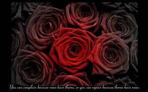 Hate Valentines Quotes 2013. Hating Valentine Valentine's Day Quotes ...
