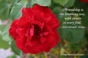 Sayings, Quotes: Oliver Wendell Holmes