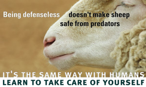 sheeple.jpg#sheeple
