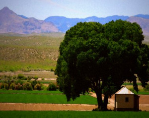 Pictures of gorgeous farms from across the world. New photo every day.