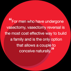 Quotes About Vasectomies...