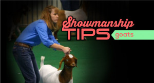 ... in articles in the ring tagged goats showmanship comments 1 bailey