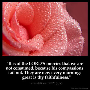 Lamentations 3:22 Inspirational Image