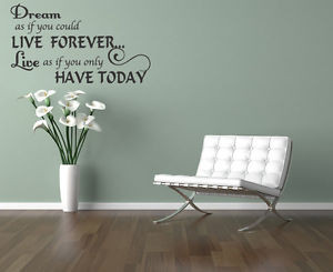 Dream-Live-Girls-Teen-Bedroom-Vinyl-Wall-Quote-Art-Decal-Sticker-Room ...