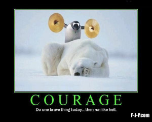 Penguin clashing symbals over sleeping polar bear image - Courage - do ...