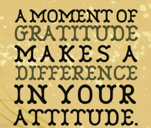 30+ Precious Attitude Quotes