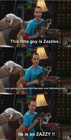 Related Pictures sheldon cooper quotes the big bang theory