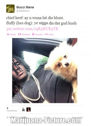 funny marijuana pictures/hit_dis_blunt.jpg