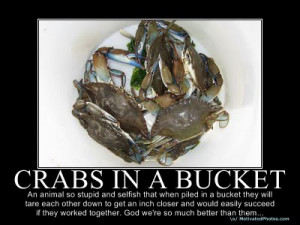 crabs-in-a-bucket-syndrome