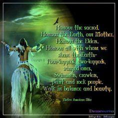 ... american wisdom plants native american3 mystic magic walks in american