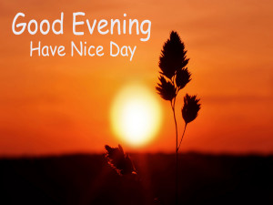 good-evening-have-a-nice-day-image-hd.jpg