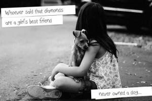 ... Quote: Whoever said diamonds area girls best friend never owned a dog