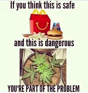 Pinned by Cannabinoid