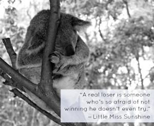 The Most Inspiring Movie Travel Quotes on Cute Photos of Sleepy Koalas