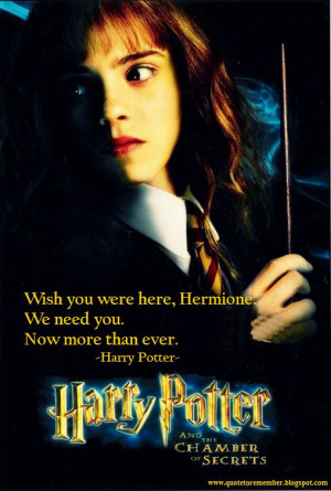 harry_potter_and_the_chamber_of_secrets+4.jpg