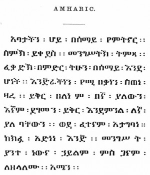 amharic funny quotes